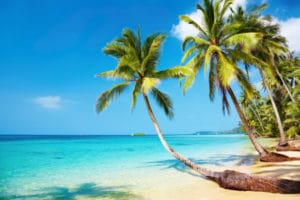 Beautiful Florida Beach